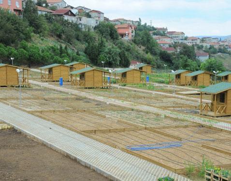 Hobi bahçeleri, bahçe tutkunlarını bekliyor