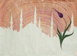 yılmaz-eneş,-gül-baba-ebru-sanatı,-Akkase-(lale-ve-Sultanahmet)-50X70--k