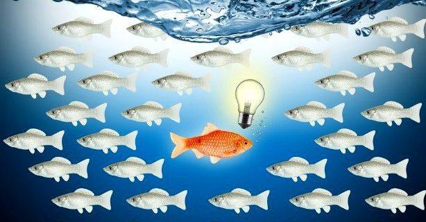 Klasik lider, Karizmatik lider, Bilimsel lider özellikleri
